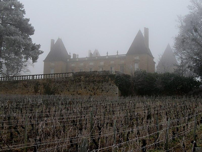 Photo du Monument Historique Domaine du château de Layé et du Vieux-Château situé à Vinzelles