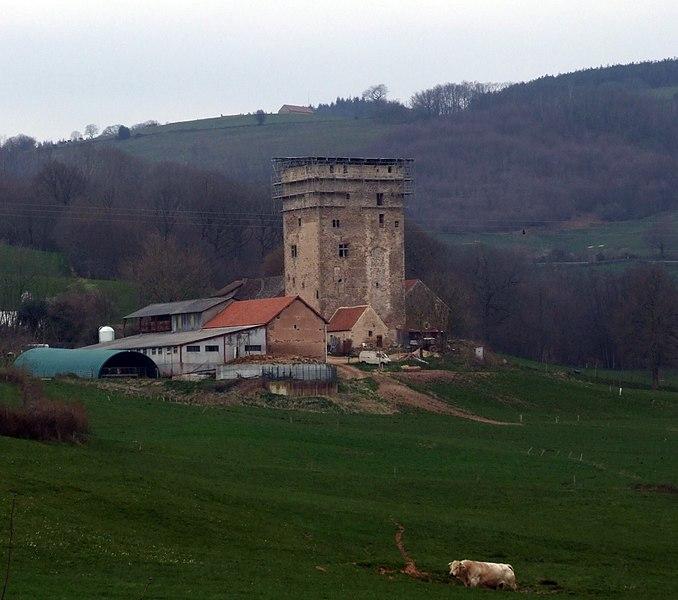 Photo du Monument Historique Tour du Bost situé à Charmoy