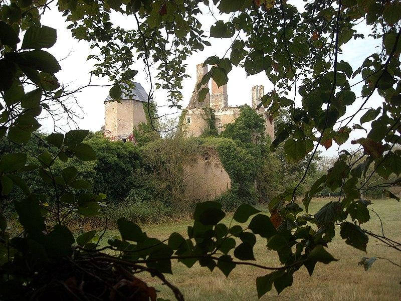 Photo du Monument Historique Château de la Buzardière situé à Changé