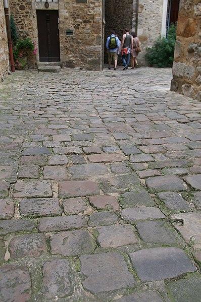 Photo du Monument Historique Sol de maison à maison de la Cour d'Assé situé à Mans (Le)