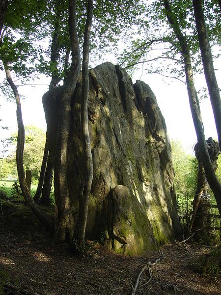 Photo du Monument Historique Menhir de Courtevrais situé à Nogent-le-Bernard