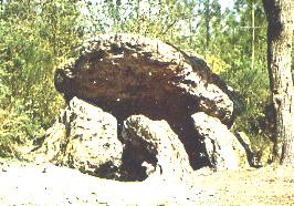 Photo du Monument Historique Dolmen de la Pierre Couverte situé à Vaas
