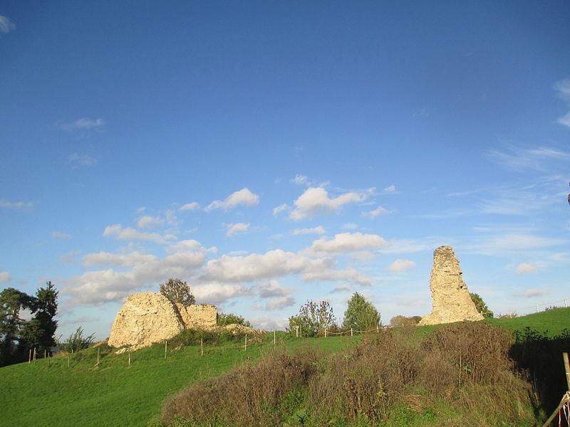 Photo du Monument Historique Ensemble castral situé à Saint-Rémy-du-Val