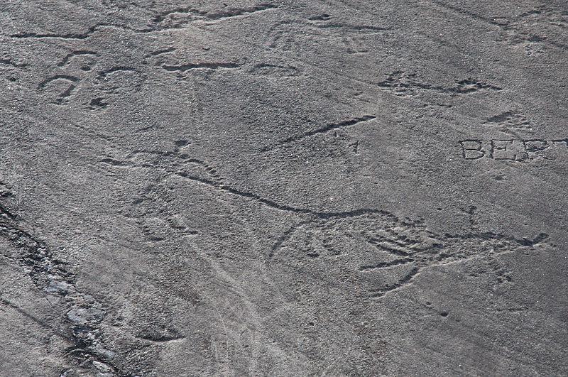 Photo du Monument Historique Gravures rupestres situé à Aussois
