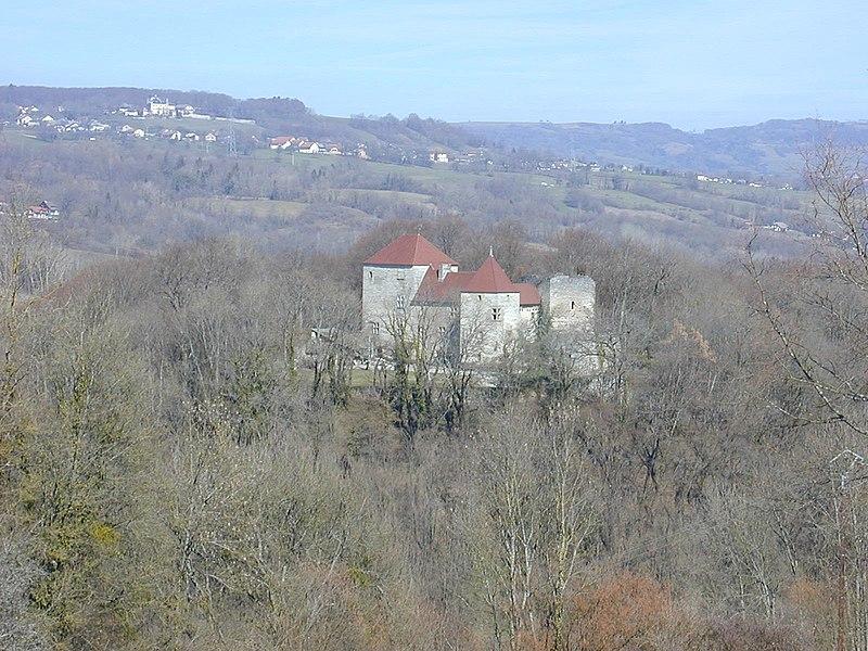 Photo du Monument Historique Château situé à Sallenôves