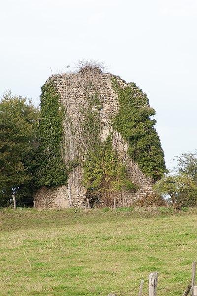 Photo du Monument Historique Site de la tour du Draillant situé à Perrignier