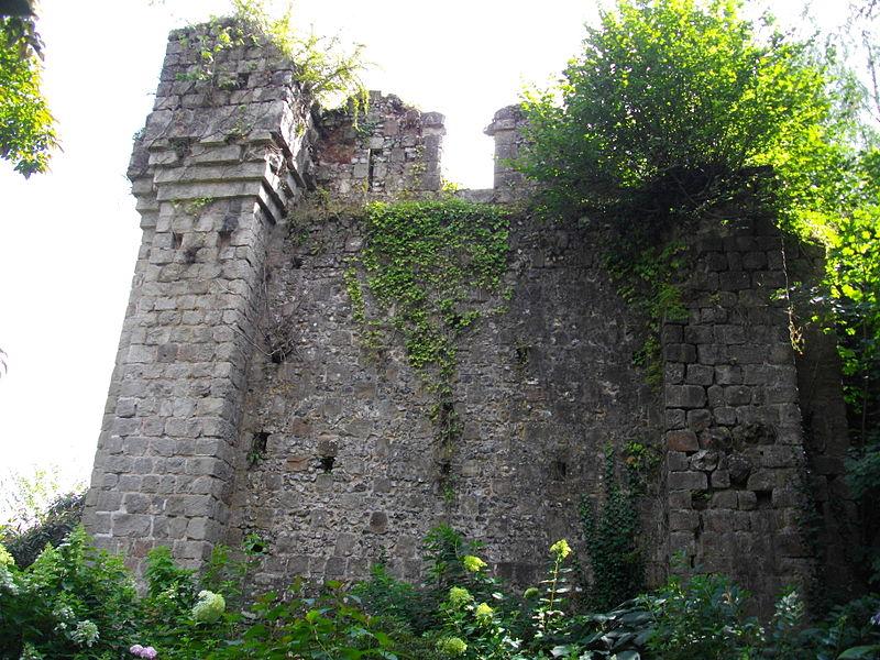 Photo du Monument Historique Château situé à Clères