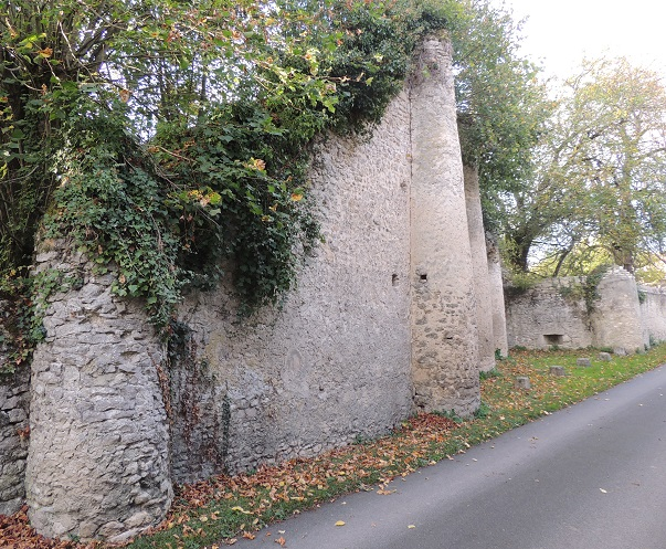 Photo du Monument Historique Château situé à Egreville