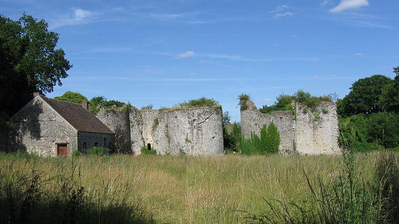 Photo du Monument Historique Château de Montaiguillon (ruines) situé à Louan-Villegruis-Fontaine
