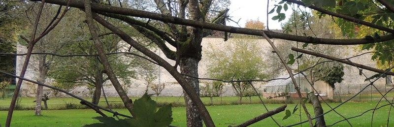 Photo du Monument Historique Château situé à Paley