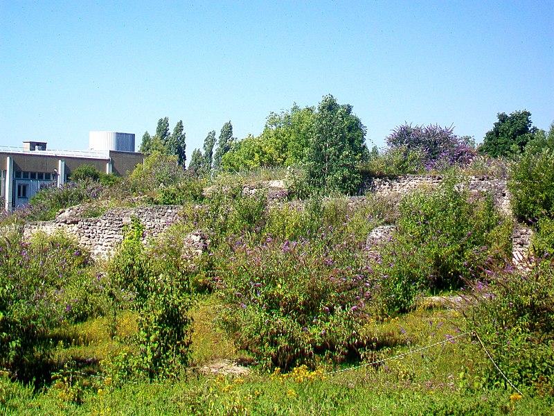 Photo du Monument Historique Sanctuaire gallo-romain de la Bauve situé à Meaux