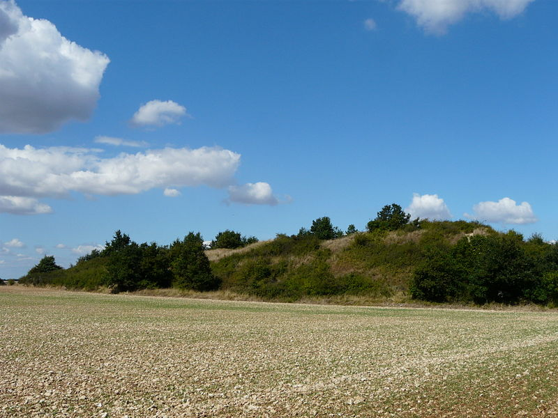 Photo du Monument Historique Tumulus situé à Assais-les-Jumeaux
