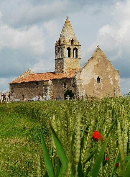 Photo du Monument Historique Eglise Saint-Martin-de-Noizé situé à Oiron