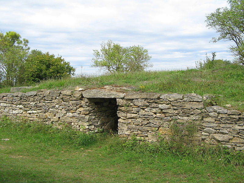 Photo du Monument Historique Ensemble des deux tumulus à chambres dolméniques, appelés tumulus du Montiou situé à Sainte-Soline