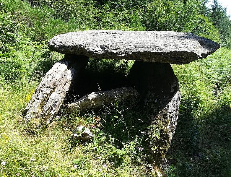Photo du Monument Historique Dolmen du Plo de Laganthe situé à Labastide-Rouairoux