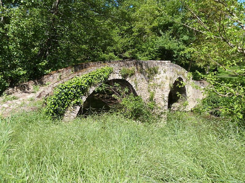 Photo du Monument Historique Pont dit Pont des Anes (également sur commune des Cabannes) situé à Vindrac-Alayrac