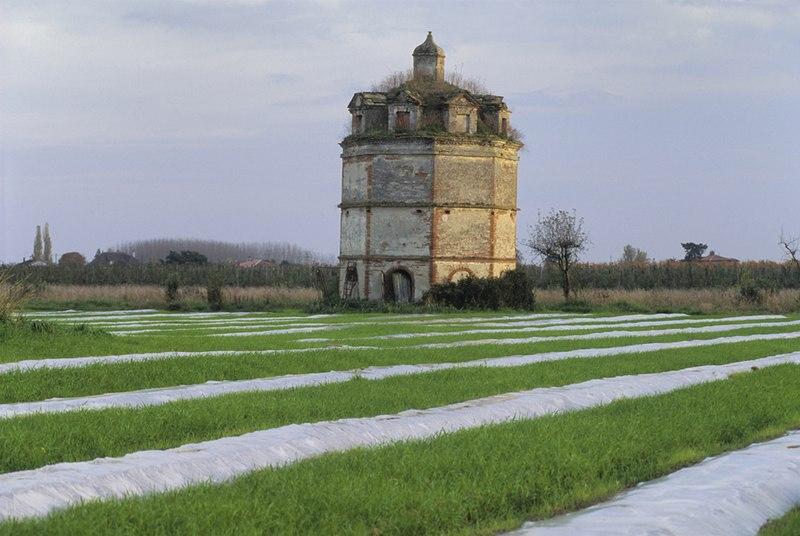 Photo du Monument Historique Pigeonnier de Milliole situé à Moissac