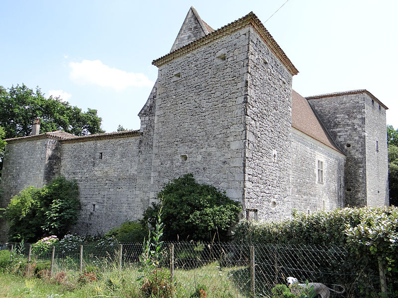 Photo du Monument Historique Ruines du château de Couyssels situé à Roquecor