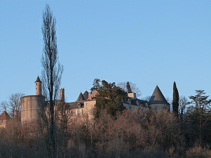 Photo du Monument Historique Château de Cornusson situé à Parisot