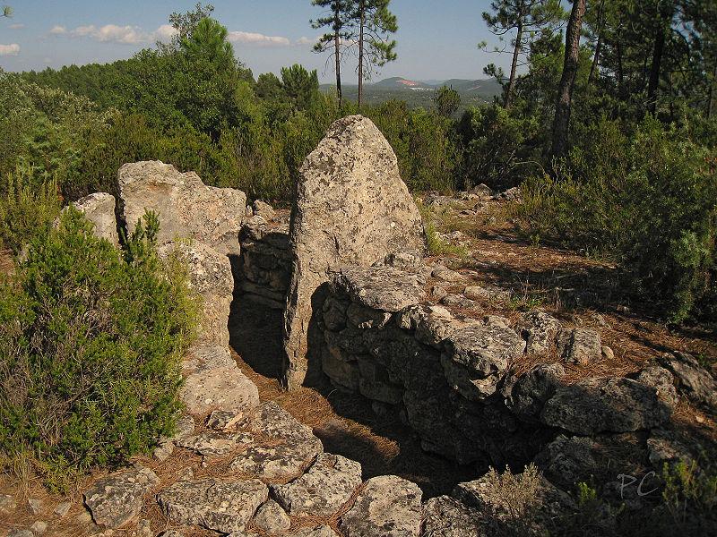 Photo du Monument Historique Dolmens n° 1 et 2 des Adrets situé à Brignoles