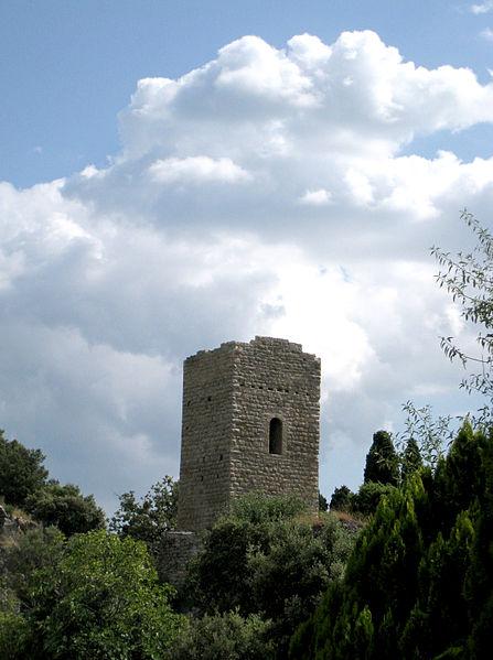 Photo du Monument Historique Tour sarrasine (ruines) situé à Châteaudouble