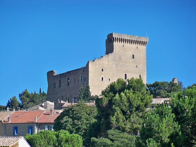 Photo du Monument Historique Château situé à Châteauneuf-du-Pape