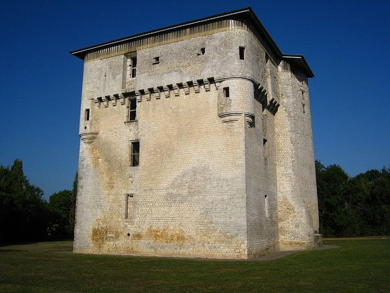 Photo du Monument Historique Donjon de Moricq situé à Angles