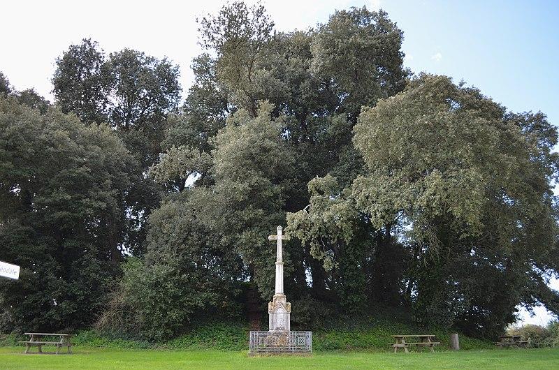 Photo du Monument Historique Motte féodale situé à Bois-de-Céné
