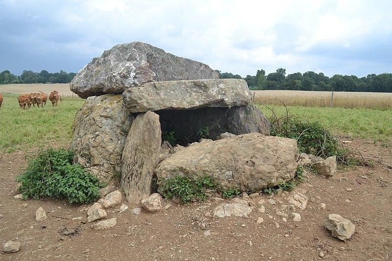 Photo du Monument Historique Dolmen de La Pierre-qui-vire situé à Cheffois