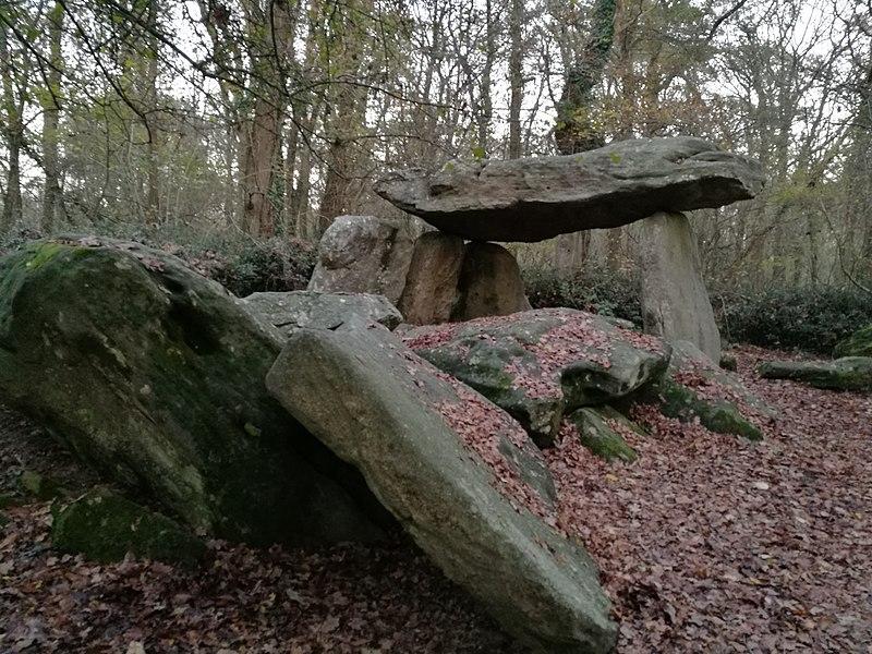 Photo du Monument Historique Allée couverte de la Pierre-Folle situé à Commequiers