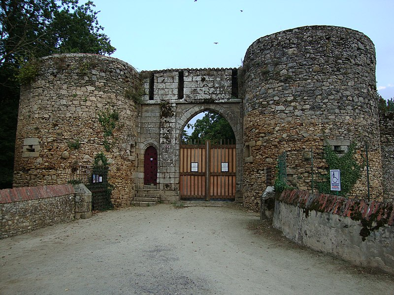 Photo du Monument Historique Château (ruines du vieux) situé à Les Essarts