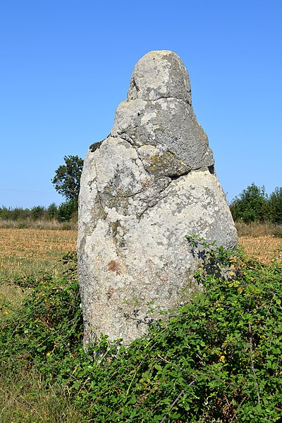 Photo du Monument Historique Menhir dit des Petites Jaunières situé à Le Givre