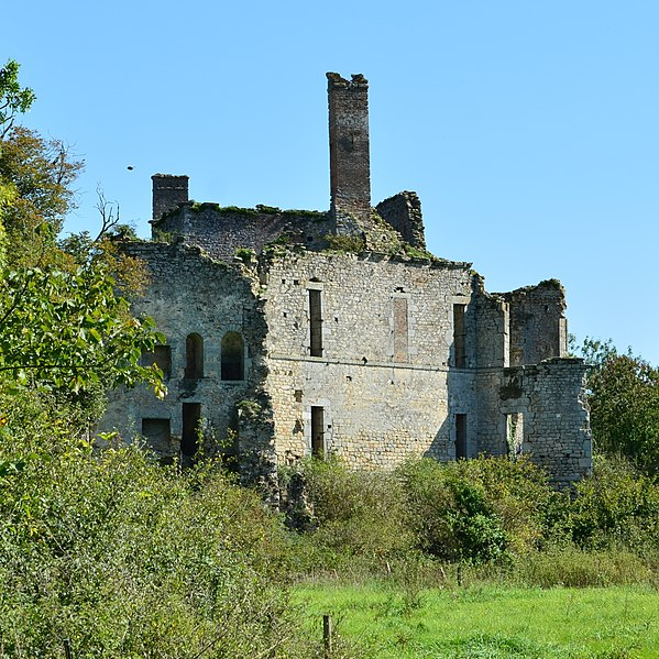 Photo du Monument Historique Château situé à Palluau