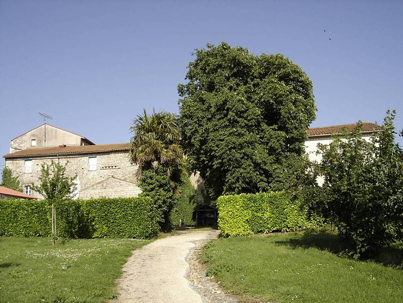 Photo du Monument Historique Ancien prieuré situé à Mouzeuil-Saint-Martin