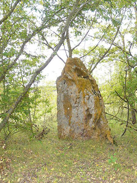 Photo du Monument Historique Cromlech situé à Aslonnes