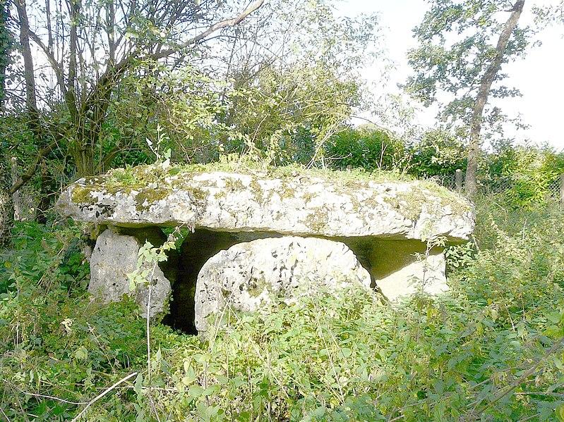 Photo du Monument Historique Dolmen de Laverré situé à Aslonnes