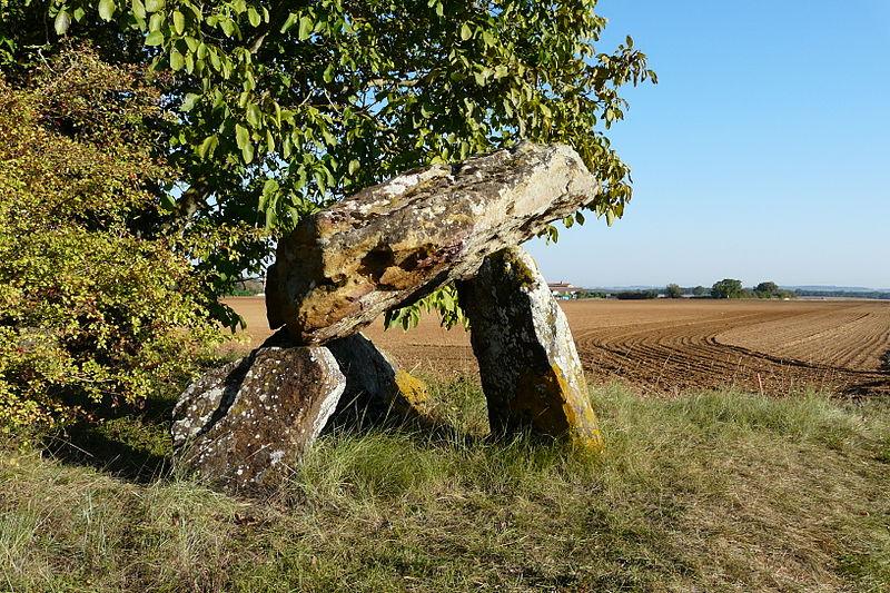 Photo du Monument Historique Dolmen de Fontenaille situé à Champigny-le-Sec