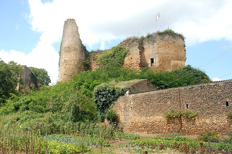 Photo du Monument Historique Château situé à Château-Larcher