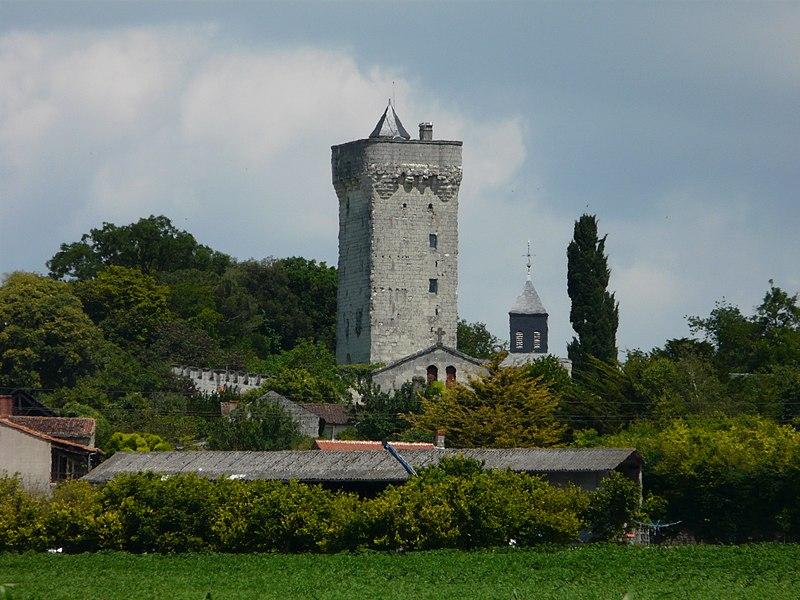 Photo du Monument Historique Donjon situé à Curçay-sur-Dive