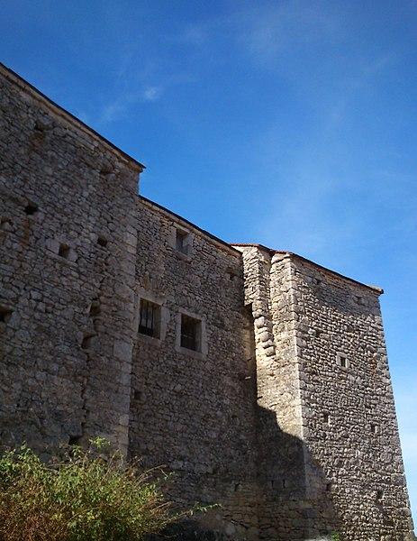Photo du Monument Historique Château de Vaucour situé à Leignes-sur-Fontaine