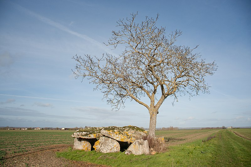 Photo du Monument Historique Dolmen de Vaon situé à Les Trois-Moutiers