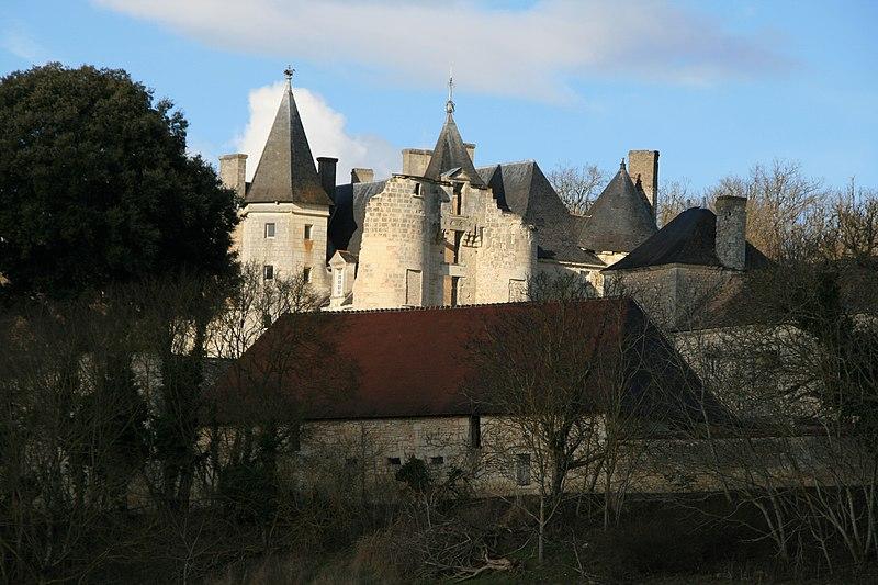 Photo du Monument Historique Château du Fou situé à Vouneuil-sur-Vienne