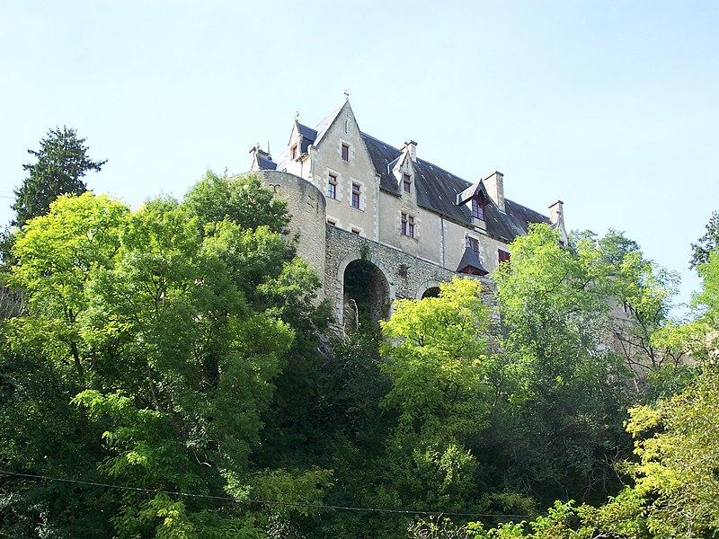 Photo du Monument Historique Château de la Guitière situé à Saint-Pierre-de-Maillé