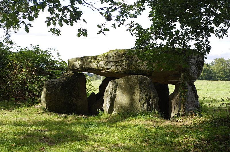 Photo du Monument Historique Dolmen de La Borderie situé à Berneuil