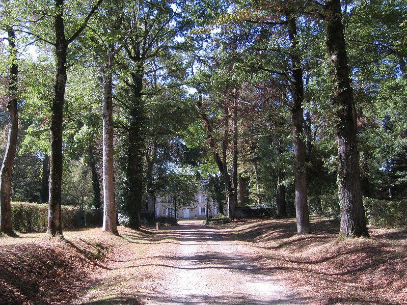 Photo du Monument Historique Château de Leymarie (également sur commune de Saint-Martin-le-Vieux) situé à Beynac