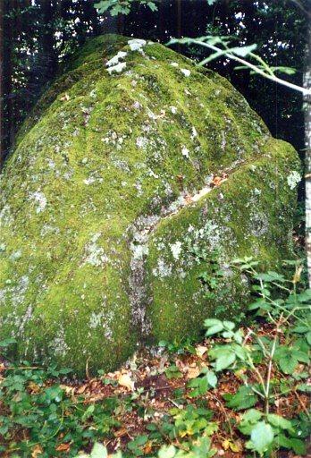 Photo du Monument Historique Polissoir dit Le Poulvan-de-Séjotte situé à Saint-Léger-Magnazeix