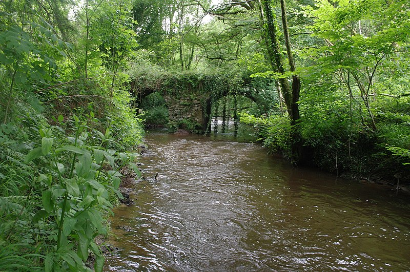 Photo du Monument Historique Pont du Moulin du Pont sur la Tardoire (également sur commune de Saint-Mathieu) situé à Saint-Bazile