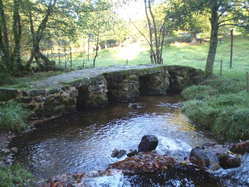 Photo du Monument Historique Planche sur la Couze dite Pont romain situé à Saint-Léger-la-Montagne