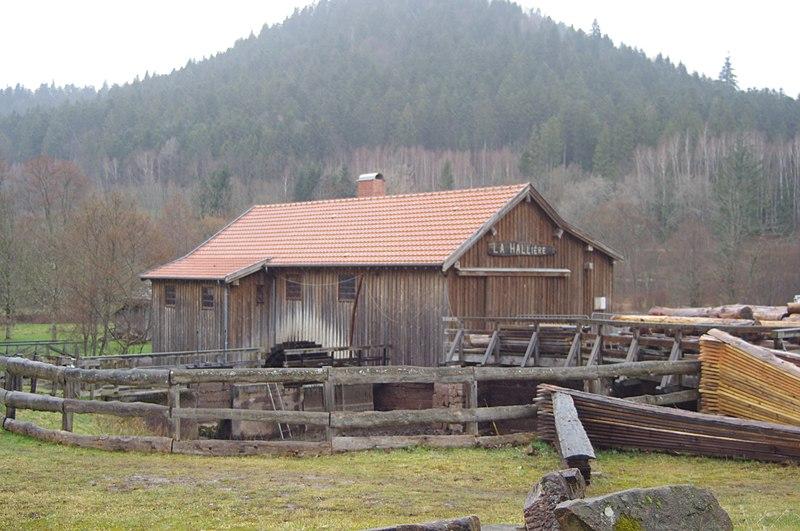 Photo du Monument Historique Scierie de la Hallière situé à Celles-sur-Plaine