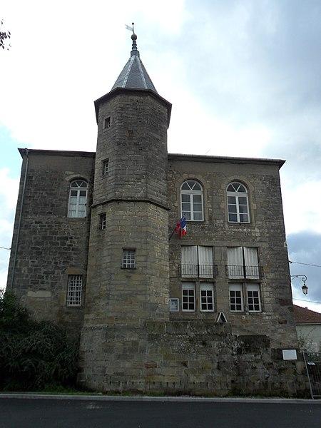Photo du Monument Historique Château situé à Darney